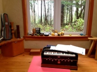 I am learning the harmonium, good thing I live alone!