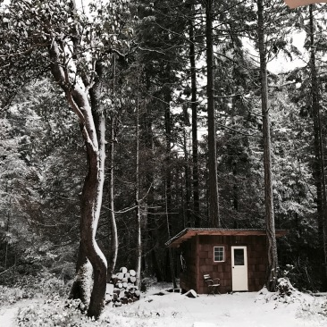 Micro cabin tucked away in the forest and snow